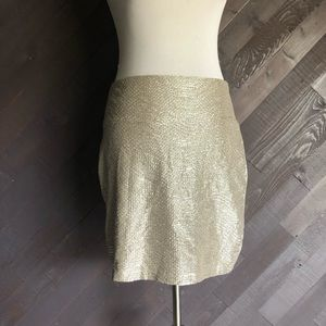 Decree Metallic Silver Skirt